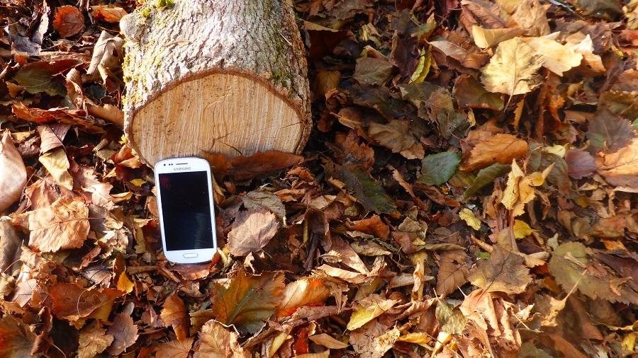 Verwoesting van woud door smartphones