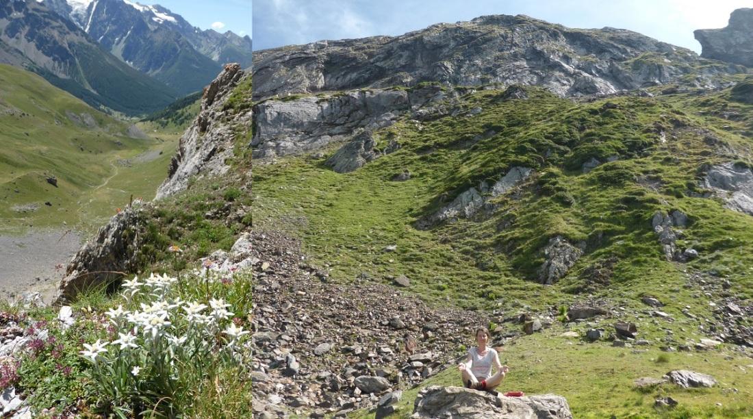 Edelweiss en ik in de bergen